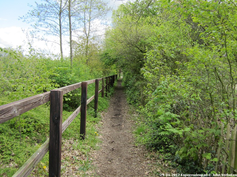 Extra wandeling Wenum-Wiesel