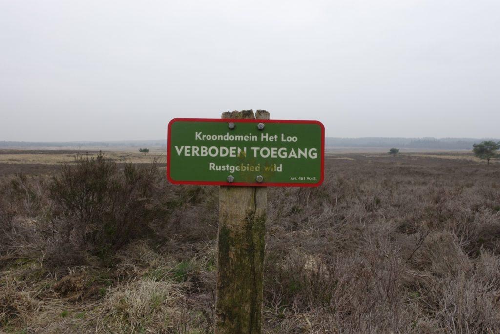 Rustgebied Asselse Heide